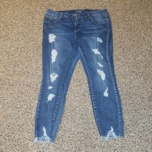 Maurice's Jeans size 16 reg, high rise